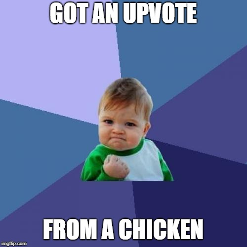 Success Kid Meme | GOT AN UPVOTE FROM A CHICKEN | image tagged in memes,success kid | made w/ Imgflip meme maker
