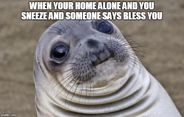 Awkward Moment Sealion Meme | WHEN YOUR HOME ALONE AND YOU SNEEZE AND SOMEONE SAYS BLESS YOU | image tagged in memes,awkward moment sealion | made w/ Imgflip meme maker