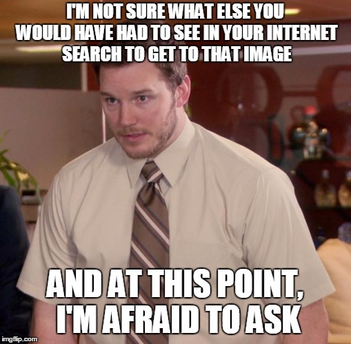 I'M NOT SURE WHAT ELSE YOU WOULD HAVE HAD TO SEE IN YOUR INTERNET SEARCH TO GET TO THAT IMAGE AND AT THIS POINT, I'M AFRAID TO ASK | made w/ Imgflip meme maker