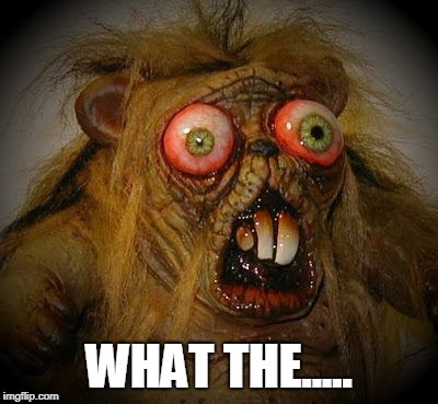 OMG It can't be! The horror!  | WHAT THE..... | image tagged in omg it can't be the horror | made w/ Imgflip meme maker