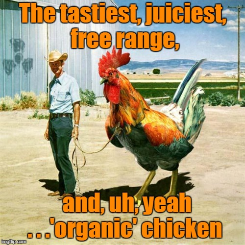 it's free range 'cause how are you gonna keep it in the coop? (Chicken Week, April 2-8, a giveuahint & JBmemegeek event | The tastiest, juiciest, free range, and, uh, yeah    . . .'organic' chicken | image tagged in memes,chicken week,chicken,mutant | made w/ Imgflip meme maker