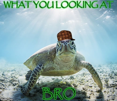WHAT YOU LOOKING AT BRO | image tagged in bro | made w/ Imgflip meme maker