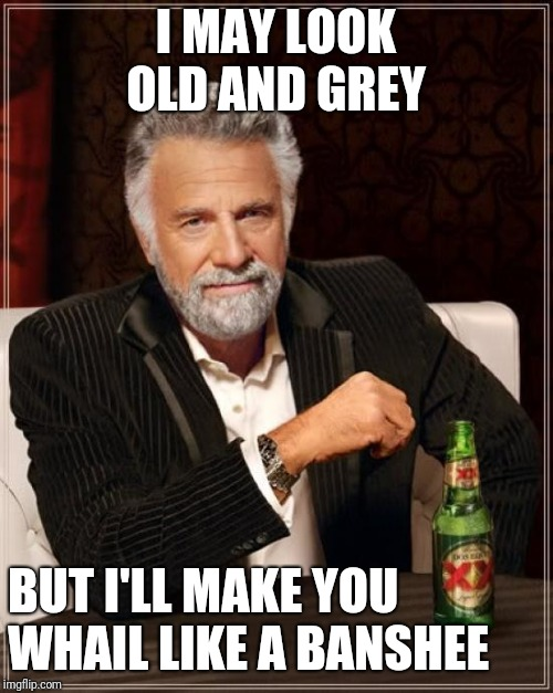 The Most Interesting Man In The World Meme | I MAY LOOK OLD AND GREY BUT I'LL MAKE YOU WHAIL LIKE A BANSHEE | image tagged in memes,the most interesting man in the world | made w/ Imgflip meme maker