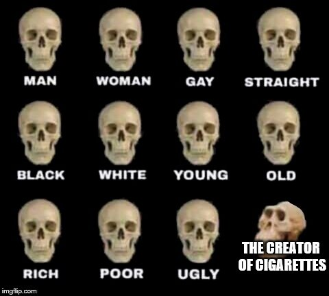 No More Smoking | THE CREATOR OF CIGARETTES | image tagged in idiot skull,smoking,environmental protection,dont smoke | made w/ Imgflip meme maker