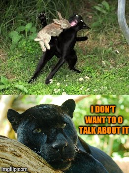Poor panther | I DON'T WANT TO O TALK ABOUT IT | image tagged in black panther,cat | made w/ Imgflip meme maker