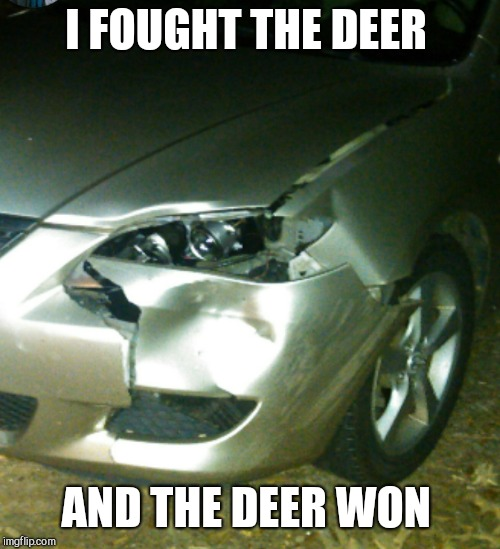 I FOUGHT THE DEER AND THE DEER WON | made w/ Imgflip meme maker