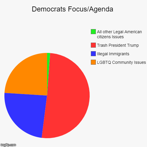 Democrats Focus/Agenda | LGBTQ Community Issues, Illegal Immigrants  , Trash President Trump, All other Legal American citizens Issues | image tagged in democrats,democrat,lgbtq,illegal immigration,donald trump,trump | made w/ Imgflip pie chart maker