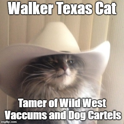 The Legend of the Longhorn State | Walker Texas Cat Tamer of Wild West Vaccums and Dog Cartels | image tagged in cat cowboy hat,walker texas ranger,texas,cat,cowboy,west | made w/ Imgflip meme maker