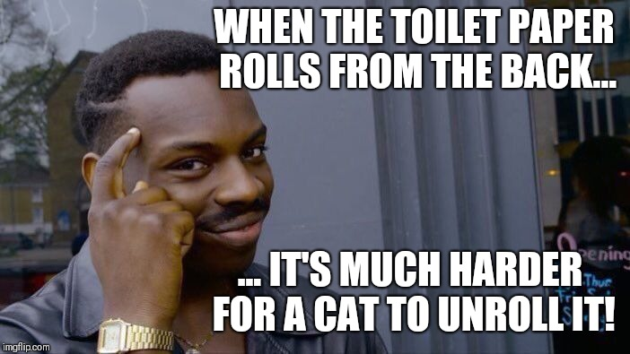 Roll Safe Think About It Meme | WHEN THE TOILET PAPER ROLLS FROM THE BACK... ... IT'S MUCH HARDER FOR A CAT TO UNROLL IT! | image tagged in memes,roll safe think about it | made w/ Imgflip meme maker
