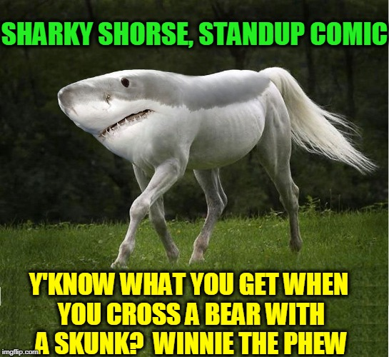 Sharky Shorse, Stand-Up Comic | SHARKY SHORSE, STANDUP COMIC Y'KNOW WHAT YOU GET WHEN YOU CROSS A BEAR WITH A SKUNK?  WINNIE THE PHEW | image tagged in cross between a shark and a horse,kid jokes,winnie the pooh jokes,vince vance,shark,horse | made w/ Imgflip meme maker