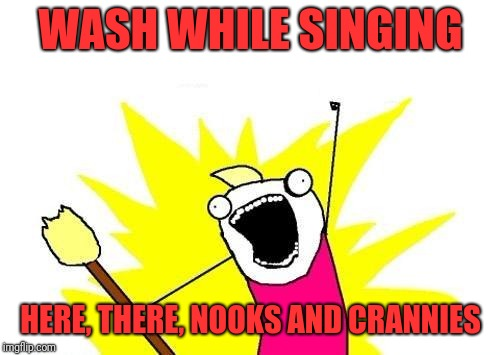 X All The Y Meme | WASH WHILE SINGING HERE, THERE, NOOKS AND CRANNIES | image tagged in memes,x all the y | made w/ Imgflip meme maker