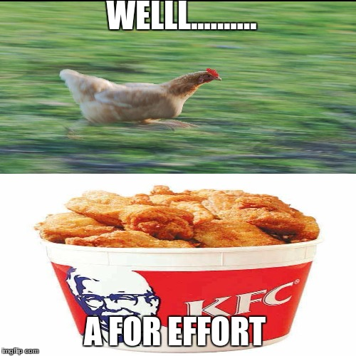 Chicken Week! A JBmemegeek & giveuahint Event (April 2-8)  | WELLL.......... A FOR EFFORT | image tagged in chicken week | made w/ Imgflip meme maker