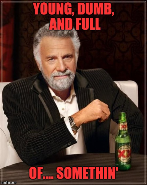 The Most Interesting Man In The World Meme | YOUNG, DUMB, AND FULL OF.... SOMETHIN' | image tagged in memes,the most interesting man in the world | made w/ Imgflip meme maker