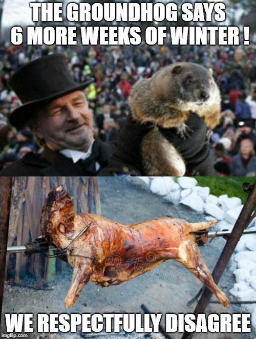 Winter has outworn its welcome.. Time for some nice weather ! | THE GROUNDHOG SAYS 6 MORE WEEKS OF WINTER ! WE RESPECTFULLY DISAGREE | image tagged in punxsutawney phil,groundhog day,winter,grilled groundhog,bye phil | made w/ Imgflip meme maker