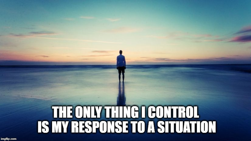 In My Control | THE ONLY THING I CONTROL IS MY RESPONSE TO A SITUATION | image tagged in serenity,peaceful,response | made w/ Imgflip meme maker