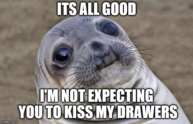 Awkward Moment Sealion Meme | ITS ALL GOOD I'M NOT EXPECTING YOU TO KISS MY DRAWERS | image tagged in memes,awkward moment sealion | made w/ Imgflip meme maker