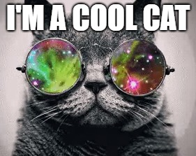 I'M A COOL CAT | made w/ Imgflip meme maker