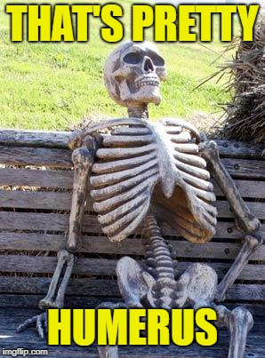 Waiting Skeleton Meme | THAT'S PRETTY HUMERUS | image tagged in memes,waiting skeleton | made w/ Imgflip meme maker