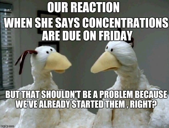 This is the reaction on Thursday night by the way | OUR REACTION WHEN SHE SAYS CONCENTRATIONS ARE DUE ON FRIDAY BUT THAT SHOULDN'T BE A PROBLEM BECAUSE WE'VE ALREADY STARTED THEM , RIGHT? | image tagged in worried chickens,art,school,procrastination | made w/ Imgflip meme maker