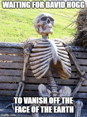 Waiting Skeleton Meme | WAITING FOR DAVID HOGG TO VANISH OFF THE FACE OF THE EARTH | image tagged in memes,waiting skeleton | made w/ Imgflip meme maker