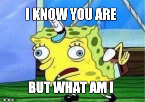 Mocking Spongebob Meme | I KNOW YOU ARE BUT WHAT AM I | image tagged in memes,mocking spongebob | made w/ Imgflip meme maker