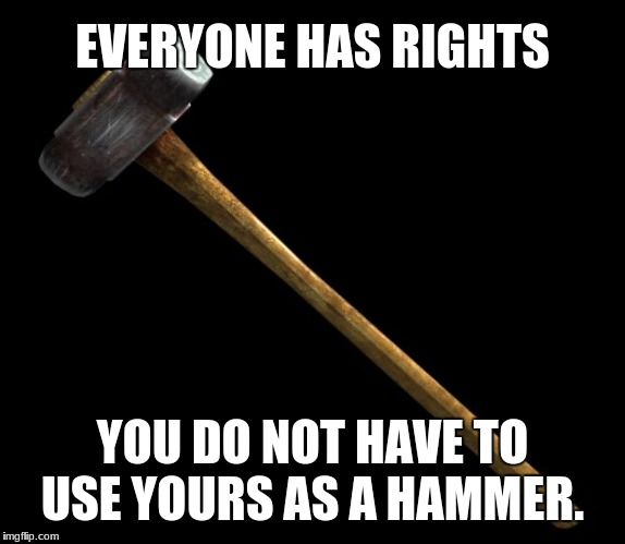 sledge hammer | EVERYONE HAS RIGHTS YOU DO NOT HAVE TO USE YOURS AS A HAMMER. | image tagged in sledge hammer | made w/ Imgflip meme maker