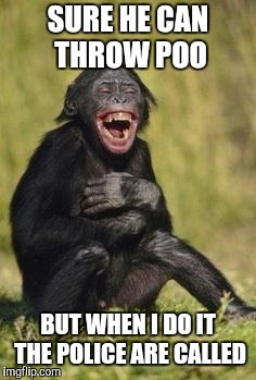 Laughing monkey | SURE HE CAN THROW POO BUT WHEN I DO IT THE POLICE ARE CALLED | image tagged in laughing monkey | made w/ Imgflip meme maker