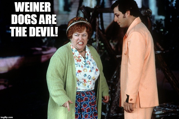 water boy mama  | WEINER DOGS ARE THE DEVIL! | image tagged in water boy mama | made w/ Imgflip meme maker
