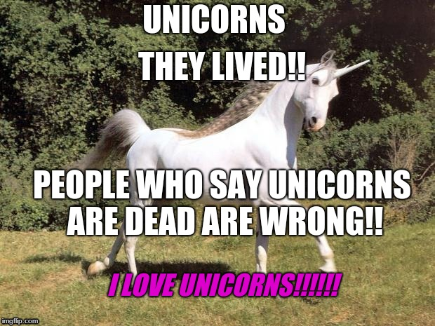 Unicorns | UNICORNS THEY LIVED!! PEOPLE WHO SAY UNICORNS ARE DEAD ARE WRONG!! I LOVE UNICORNS!!!!!! | image tagged in unicorns | made w/ Imgflip meme maker