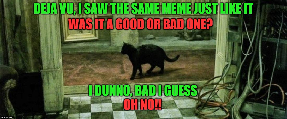IMGFLIP- A good meme reposted is not a bad thing, a meme you have seen multiple times may not have been seen at all by some.  | DEJA VU, I SAW THE SAME MEME JUST LIKE IT WAS IT A GOOD OR BAD ONE? I DUNNO, BAD I GUESS OH NO!! | image tagged in imgflip users,meanwhile on imgflip,matrix,memes,meme | made w/ Imgflip meme maker