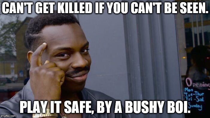 Roll Safe Think About It Meme | CAN'T GET KILLED IF YOU CAN'T BE SEEN. PLAY IT SAFE, BY A BUSHY BOI. | image tagged in memes,roll safe think about it | made w/ Imgflip meme maker