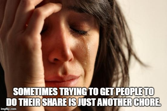 First World Problems Meme | SOMETIMES TRYING TO GET PEOPLE TO DO THEIR SHARE IS JUST ANOTHER CHORE. | image tagged in memes,first world problems | made w/ Imgflip meme maker
