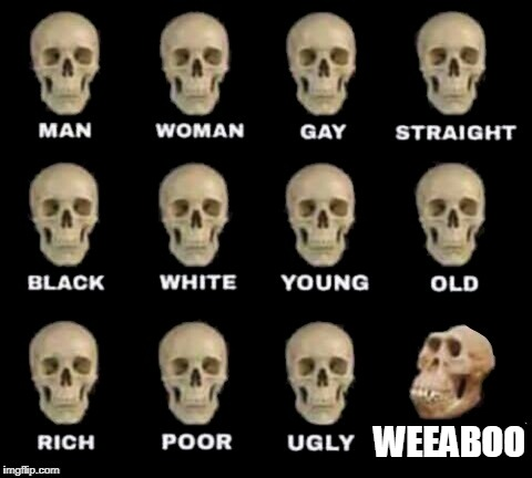 idiot skull | WEEABOO | image tagged in idiot skull | made w/ Imgflip meme maker