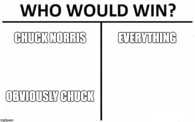 Who Would Win? Meme | CHUCK NORRIS EVERYTHING OBVIOUSLY CHUCK | image tagged in memes,who would win | made w/ Imgflip meme maker
