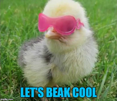 LET'S BEAK COOL | made w/ Imgflip meme maker