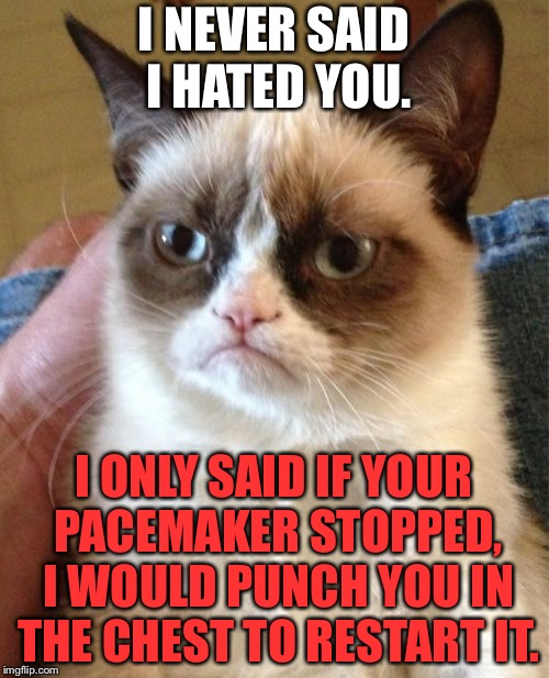Heartstopper | I NEVER SAID I HATED YOU. I ONLY SAID IF YOUR PACEMAKER STOPPED, I WOULD PUNCH YOU IN THE CHEST TO RESTART IT. | image tagged in memes,grumpy cat,heart,punch,falcon punch,doctor | made w/ Imgflip meme maker