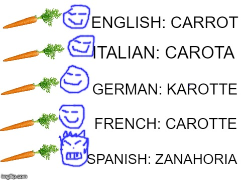 blank white template | ITALIAN: CAROTA SPANISH: ZANAHORIA ENGLISH: CARROT GERMAN: KAROTTE FRENCH: CAROTTE | image tagged in blank white template | made w/ Imgflip meme maker