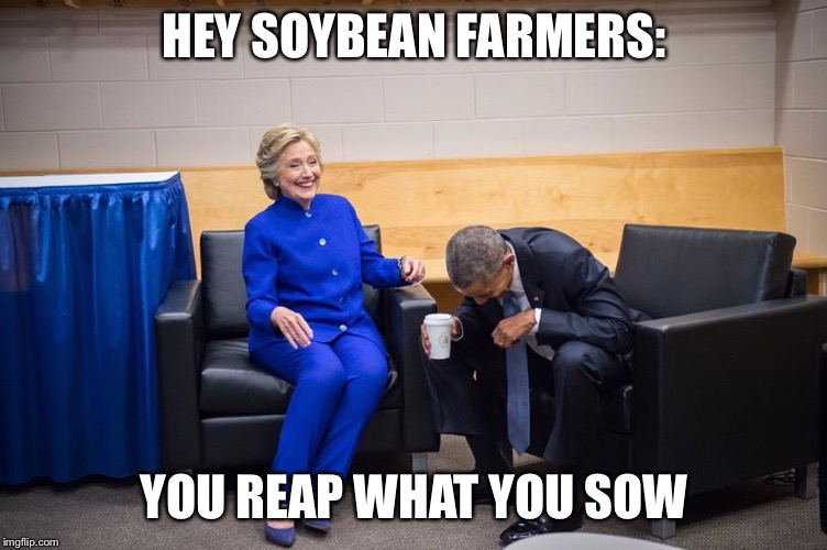 Hillary Obama Laugh | HEY SOYBEAN FARMERS: YOU REAP WHAT YOU SOW | image tagged in hillary obama laugh | made w/ Imgflip meme maker