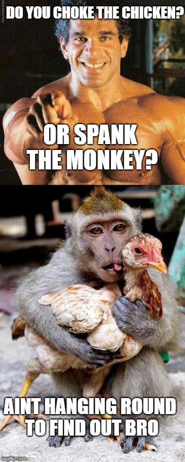 choke the chicken | OR SPANK THE MONKEY? DO YOU CHOKE THE CHICKEN?  AINT HANGING ROUND TO FIND OUT BRO | image tagged in what do you mean | made w/ Imgflip meme maker