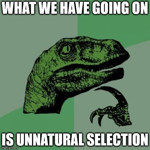 Philosoraptor Meme | WHAT WE HAVE GOING ON IS UNNATURAL SELECTION | image tagged in memes,philosoraptor | made w/ Imgflip meme maker