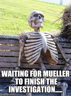Waiting Skeleton Meme | WAITING FOR MUELLER TO FINISH THE INVESTIGATION..... | image tagged in memes,waiting skeleton | made w/ Imgflip meme maker