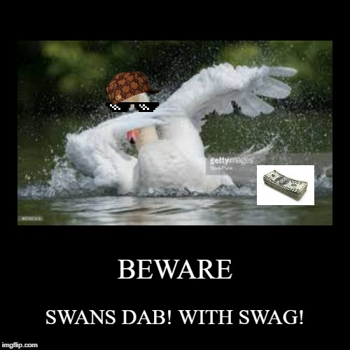 Swans dab like... | BEWARE | SWANS DAB! WITH SWAG! | image tagged in funny,demotivationals | made w/ Imgflip demotivational maker
