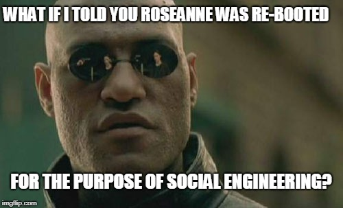 Matrix Morpheus Meme | WHAT IF I TOLD YOU ROSEANNE WAS RE-BOOTED FOR THE PURPOSE OF SOCIAL ENGINEERING? | image tagged in memes,matrix morpheus | made w/ Imgflip meme maker