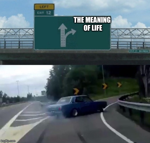 Left Exit 12 Off Ramp Meme | THE MEANING OF LIFE | image tagged in memes,left exit 12 off ramp | made w/ Imgflip meme maker