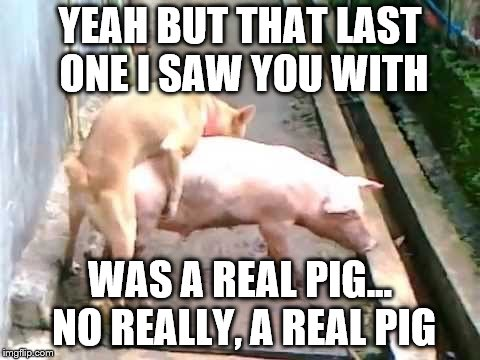 YEAH BUT THAT LAST ONE I SAW YOU WITH WAS A REAL PIG... NO REALLY, A REAL PIG | made w/ Imgflip meme maker