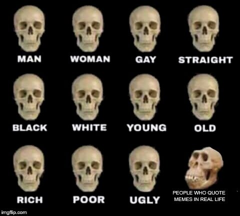 idiot skull | PEOPLE WHO QUOTE MEMES IN REAL LIFE | image tagged in idiot skull | made w/ Imgflip meme maker