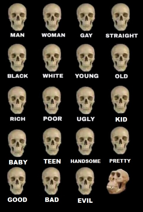High Quality Idiot Skull Extended Blank Meme Template