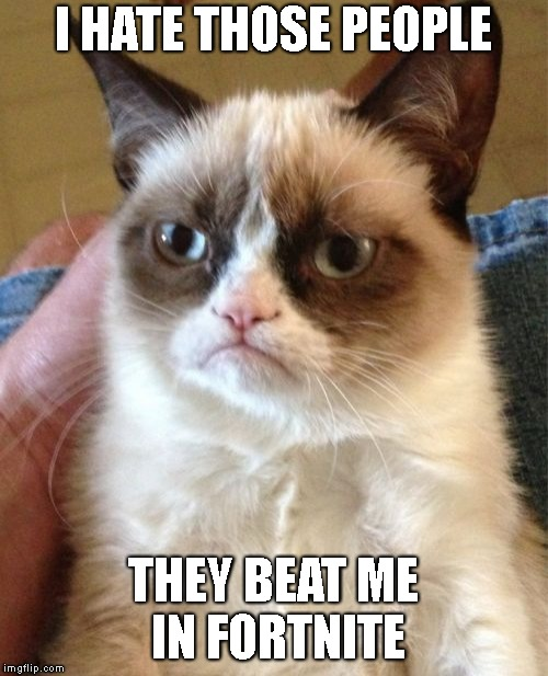 I HATE THOSE PEOPLE THEY BEAT ME IN FORTNITE | image tagged in memes,grumpy cat | made w/ Imgflip meme maker
