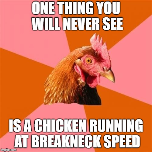 Don't Worry This Is Not Another Joke For Chicken Week April 2-8 - A JBmemegeek & giveuahint Event | ONE THING YOU WILL NEVER SEE IS A CHICKEN RUNNING AT BREAKNECK SPEED | image tagged in memes,anti joke chicken,chicken week | made w/ Imgflip meme maker