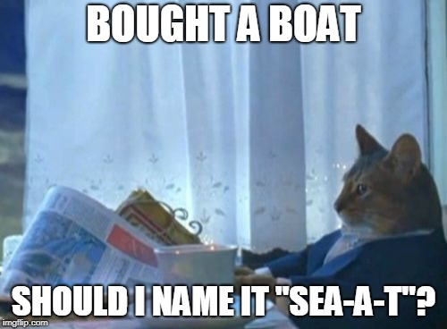 "I Should Buy A Boat Cat Meme | BOUGHT A BOAT SHOULD I NAME IT ""SEA-A-T""? 